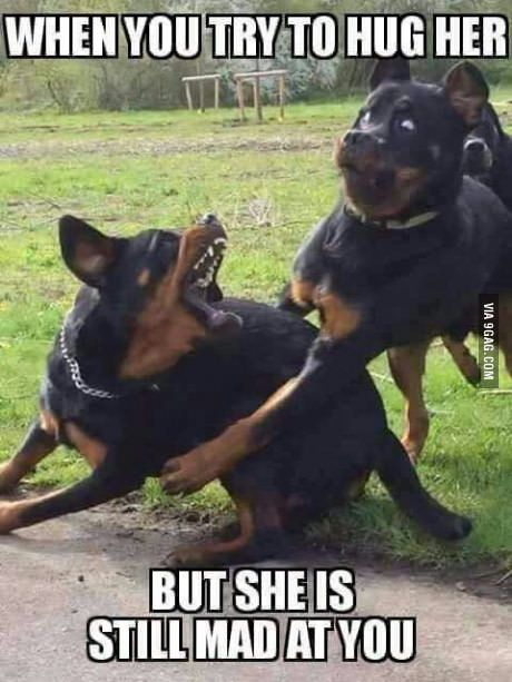 Top-24-funny-couple-memes3