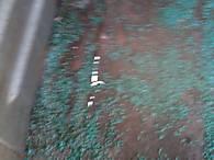 Sub_floor_right_side_rust_thru_small.jpg