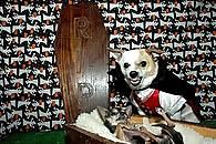 coffin-dog.jpg