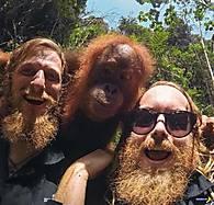 funny-men-beard-orangutang.jpg