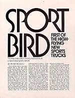 sportbird2.jpg