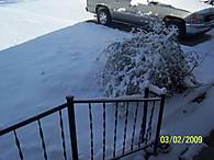 snow_040.jpg
