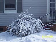 snow_054.jpg